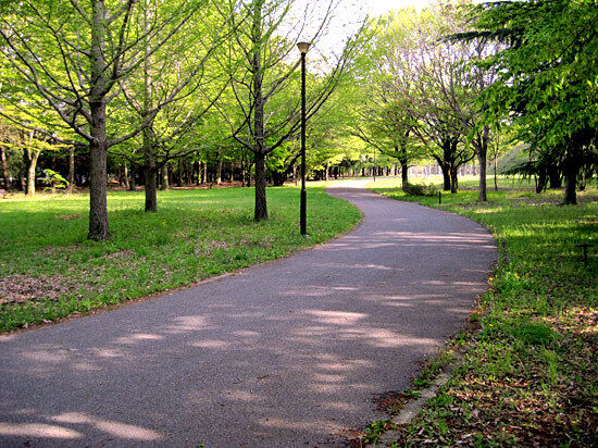 公園 緑地
